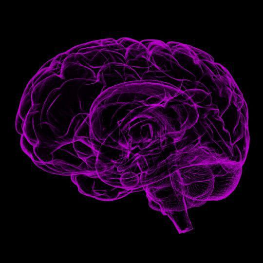 Opatrovanie pacienta s Alzheimerovou chorobou
